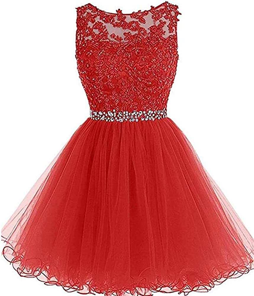 Snow Lotus Women's Short Beaded Homecoming Dress A Line Tulle Applique Cocktail Gown