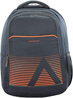 ARISTOCRAT NEO 2 Laptop Backpack Dark Grey