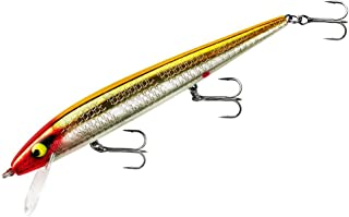 Smithwick Lures Perfect 10 Rogue Fishing Lure
