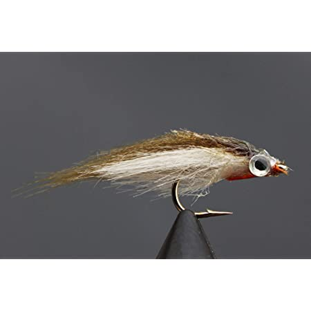 Tigofly 24 St/ück//Lot sch/öne Blaue /& Schwarze Federkegel Kopfschl/äuche Fliegenfischen Fliegenfischen Fliegenk/öder