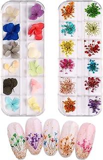 JYHF 2 cajas de flores secas de uñas 3d arte de uñas 24 colores reales naturales pequeñas flores secas prensa naturaleza p...