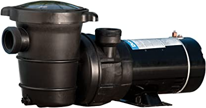 Doheny's Replacement Swimming Pool Pump for Above Ground Pools - 1HP