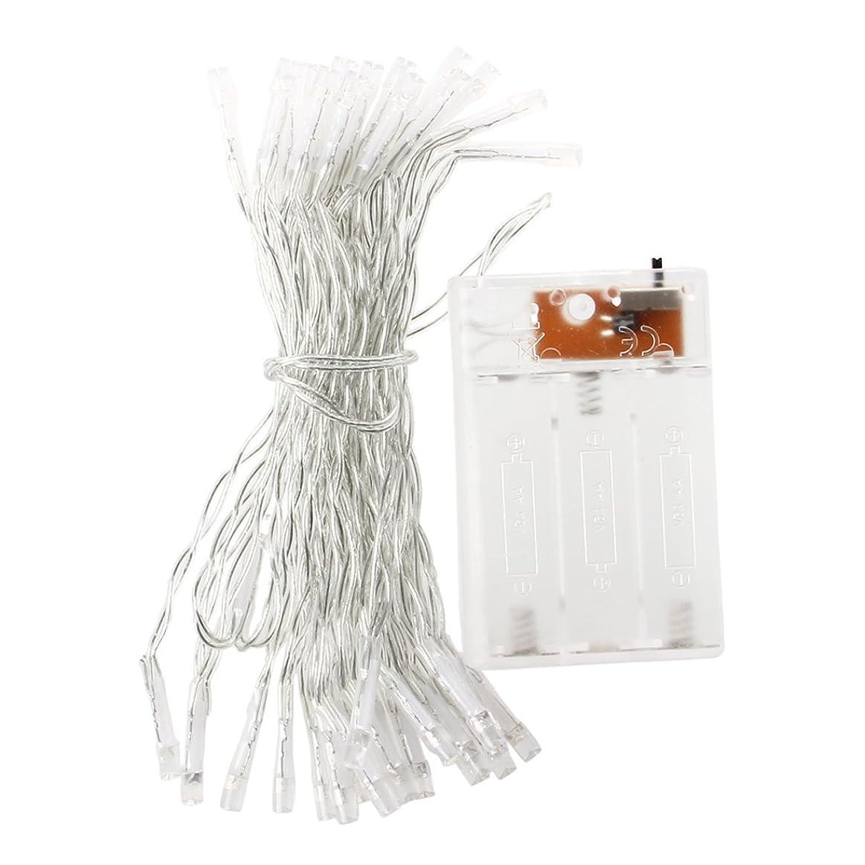 集める強度野ウサギSODIAL(R) 暖かい白色光LEDバッテリーの装飾40