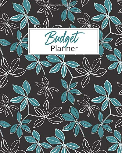 Budget Planner: 2020 Monthly Financial Tracker Organizer Savings Worksheets