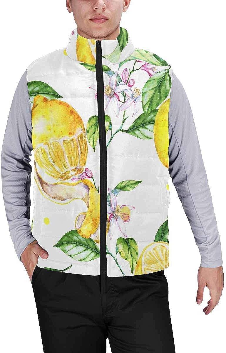 InterestPrint Men's Outdoor Casual Stand Collar Sleeveless Jacket Wildlife Background from Africa