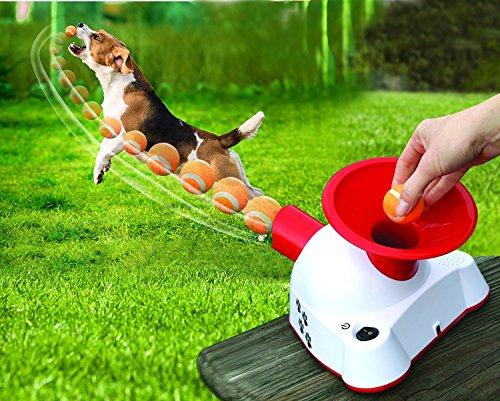 Etna Gotcha Talking Dog Fetch Toy, an Automatic Ball...