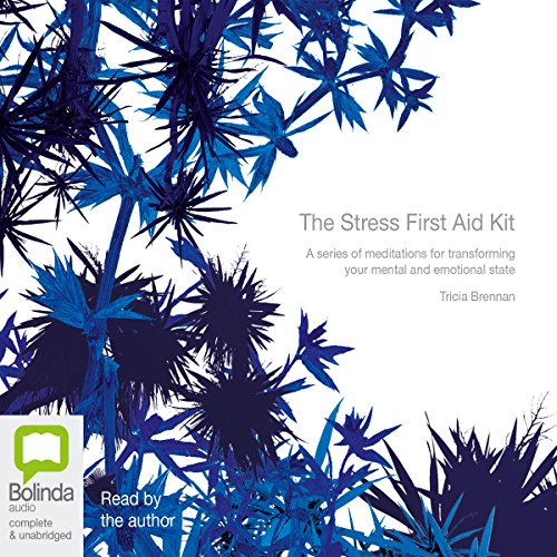 The Stress First Aid Kit audiobook cover art
