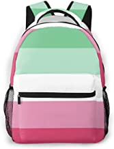 Abrosexual Pride Flag Themed Canvas Casual Mesh Backpack Pattern Printed Bookbag Book Back Mini Laptop Bag For Girls Boy Teen Women Kid Men School Travel Hiking