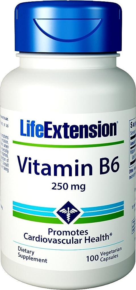 勤勉大臣つづり海外直送品Vitamin B6, 250 mg, 100 Vcaps by Life Extension