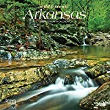 Arkansas Wild & Scenic 2020 7 x 7 Inch Monthly Mini Wall Calendar, USA United States of America Southeast State Nature (English, French and Spanish Edition)