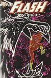 The Flash nº 02 Iron Heights