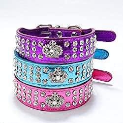 Pet's House Dog Collars