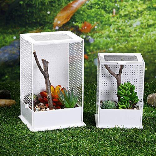 wisedwell Fütterungsbox Transport Mantis Acryl Fütterungsbox für Reptilien Terrarium Insekten Box Transparent mit Deckel für Amphibien, Mantis und Insekten