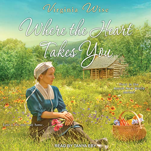 Where the Heart Takes You audiobook cover art