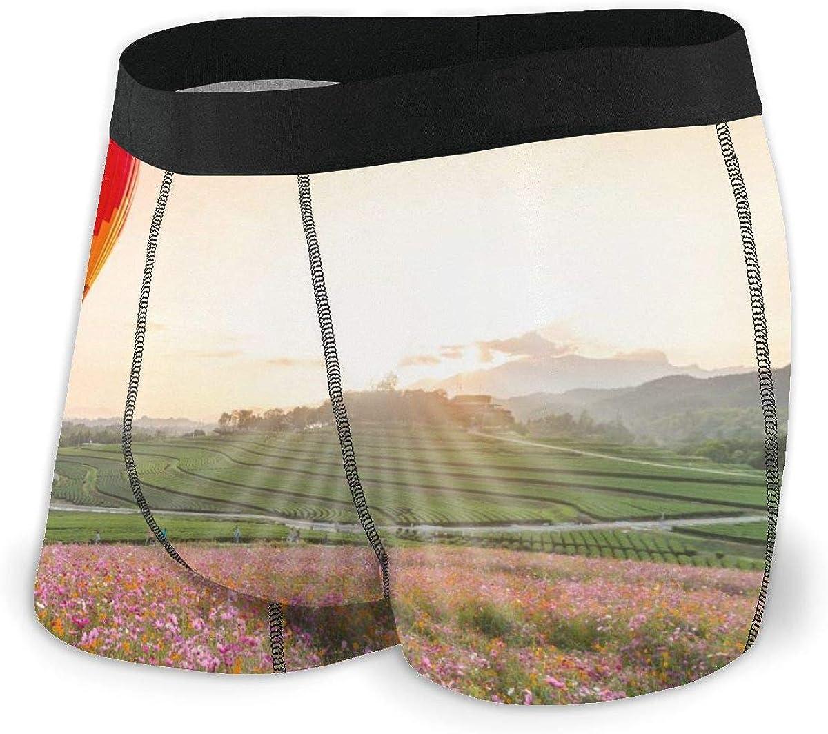 Mens Boxer Briefs Vector Hot Air Balloon Breathable Underwear