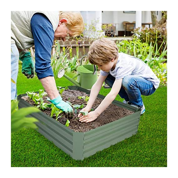 2-pack outoorraised garden bed galvanized planter box anti-rust coating planting vegetables herbs and flowers for… 6 wonderful planter box - 32in x32in x 12in square galvanized raised garden bed provide good drainage, keep weeds away from soil, defense against pests, and protect your plants; you can plant your favorite plants in your patio with this wonderful gardening tools. Safety material & edges - made of galvanized steel; which is rustproof and safe material ;do not contaminate soil, safe for plants and humans; outdoor bed kit edges are not sharp and will not hurt your fingers. High strength - metal piece designed with wave structure,provide better pressure resistance; thickened steel and reinforced corners can easily hold the soil and the plants.