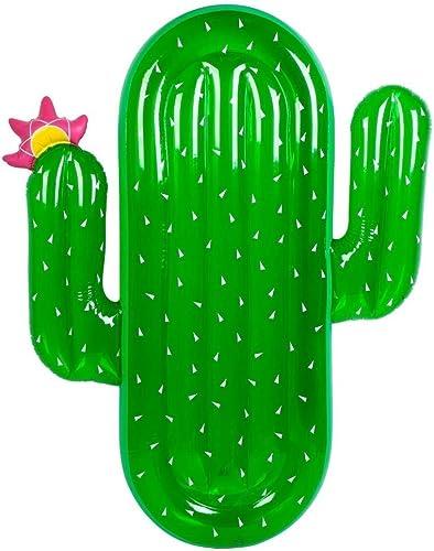 In The Swim Anneau De Natation, Jouets D'été De DivertisseHommest De l'eau, Coussin D'échappeHommest Flottant Gonflable De PVC D'anneau De Natation De Cactus De 180cm