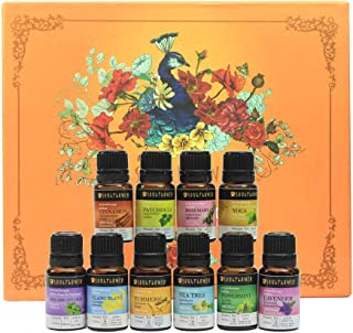 Soulflower Aromatherapy Top 10 Essential Oils – 100% Pure Premium Quality Peppermint,Tea Tree,Rosemary,Cinnamon,Patchouli,Yoga,Dreamcatcher,Ylang Ylang,Turmeric,Lavender – Therapeutic Grade(10 x10 ml)