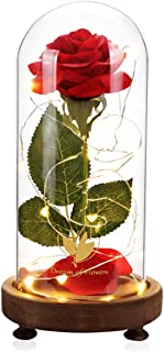 Beauty and the Beast Rose, USB Switch, Magic Rose, Red Silk Rose Flower & Glass Dome LED Decorative Light, Home Furnishing, Beautiful Romantic Christmas Gift