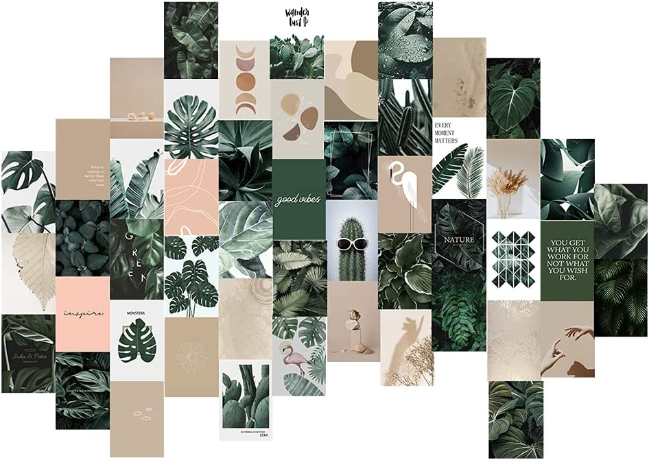 Wall Collage Kit Aesthetic Posters,Indie Room Decor, Photo Collage Kit for Wall Aesthetic, Posters for Room Aesthetic, Wall Decorations for Teen Girls Dorm,Boho Plants (50 Set 4x6 Inch)