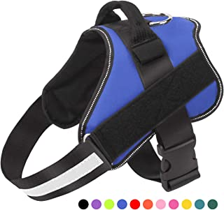 Best slip on dog harness Reviews