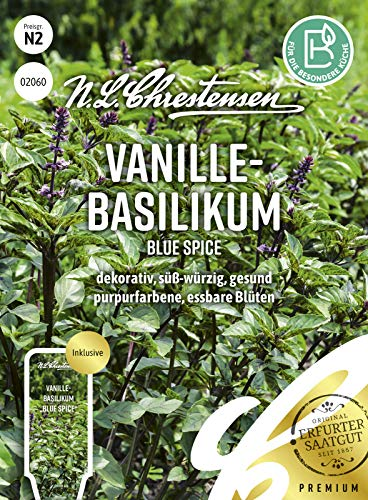 Vanille- Basilikum Blue Spice Samen, Saatgut