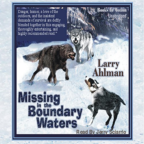 Missing in the Boundary Waters cover art