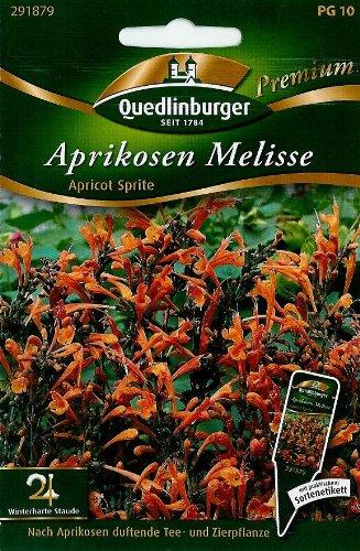 Aprikosen Melisse