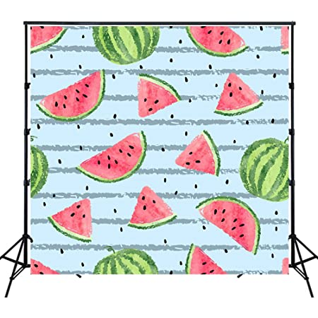 Amazon Com Aofoto 5x3ft Outdoors Travel Picnic Scene Backdrop Summer Watermelons Juice Forest Camping Holiday Celebration Photography Studio Background Birthday Party Decoration Banner Video Drape Photos Prop Camera Photo