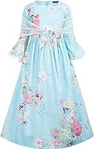 cherry fancy dress costume