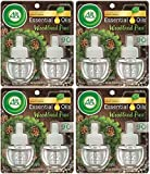 Air Wick Scented Oil Refills - Holiday Collection 2018 - Woodland Pine Fragrance - 2 Count Oil Refills Per Package - Pack of 4 Packages (Total of 8 Oil Refills)