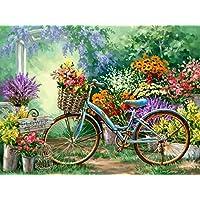 Golden Maple: kit de bricolaje para pintura al óleo sobre lienzo preimpreso con números a seguir; para decorar la casa y pintar adultos y niños; 41 x 51 cm, motivo: bicicleta floral