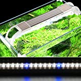 JackSuper Aquatic Plant Aquarium Light for Small Fish Tank Growth Planted Lighting with Extend Bracket Adjustable White Blue LED Lamp Kits Fits for Plant Grow Reef Tank (13.77-15.7 inch Adjustable)