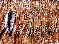 沼津のひもの 片口いわし醤油 40枚 サスタ水産