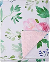 Baby Blanket for Girls Super Soft Double Layer Minky with Dotted Backing, Receiving Blanket with Pink Floral Multicolor Printed Blanket 30 x 40 Inch(75x100cm)