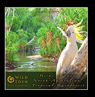 Birds of the North Australian Tropical Rainforest (feat. Dr Eric Fassbender) by Wild Eden Nature Sounds