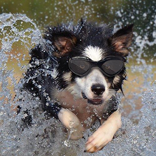 Namsan stilvolles und Fun Tier/Hundewelpen UV-Schutzbrillen Sonnenbrille Wasserdichten Schutz Sun-Brille Fuer Hunde-Black