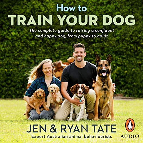 How to Train Your Dog cover art