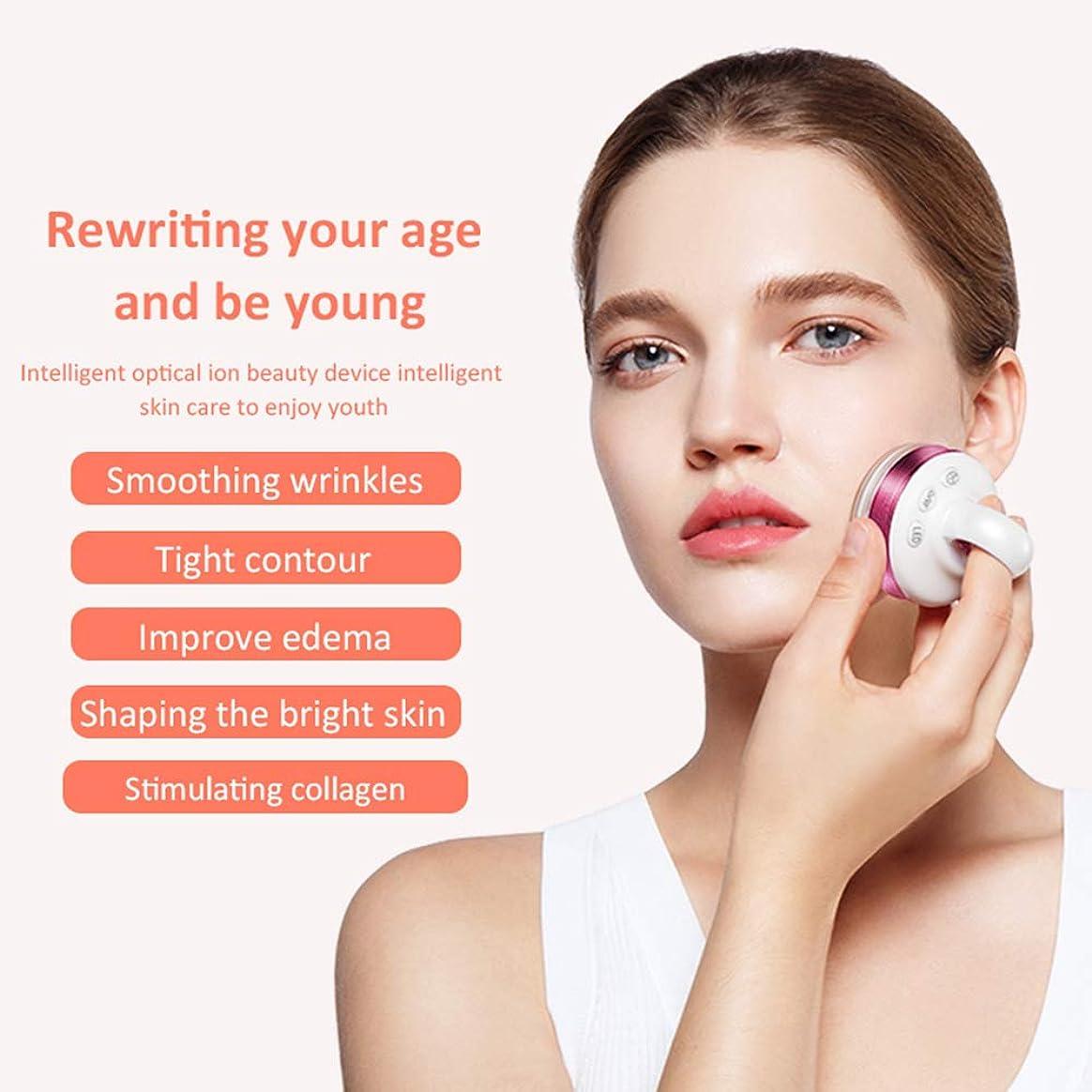 納得させる防衛大いに顔と体のプロフェッショナルのためのRfマシン、EMSマッサージャー、ハンドヘルドフェイシャルイオン導入機器、家庭用美容機器振動機器,紫色