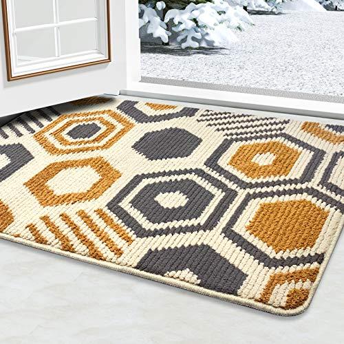 Color&Geometry Indoor Doormat, Front Door Mat 24'x36', Waterproof, Non Slip Washable Quickly Absorb Moisture and Resist Dirt Rugs