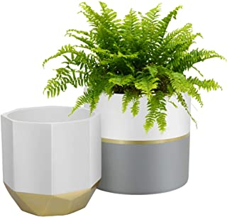 White Ceramic Flower Plant Pots - 6.5 Inch Pack 2 Modern Indoor Planters, Geometric Octagon & Round Plant Containers with Gold Accent