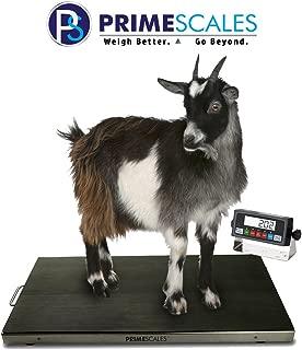 Ps-700as 700×0.1lb 44″ X 22″ X 2″ Vet Scale/Animal Scale/Small Livestock Scale | Mild Steel Frame | 304 Stainless Steel Platter | 4 Aluminum Full Bridge Load Cells and Anti-Slip Rubber Mat