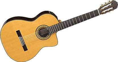 jual gitar takamine