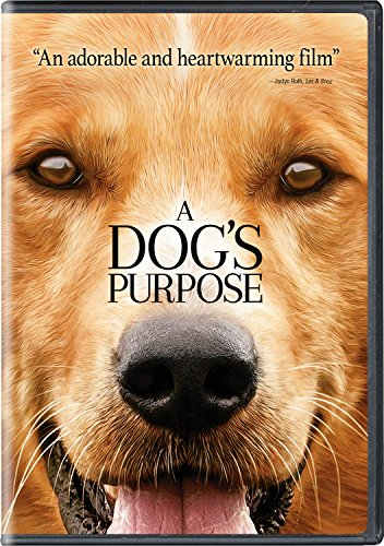A Dogs Purpose (DVD)