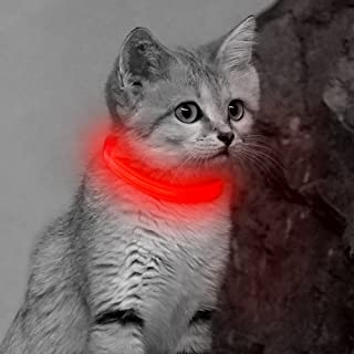 Vizpet LED Cat Dog Collar USB Rechargeable & XS Adjustable Size Nylon Collar Bright Safety Pet Collar for Small Cats & Dogs