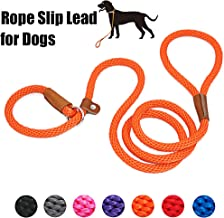 lynxking Dog Leash Slip Rope Lead Leash Strong Heavy Duty Braided Rope No Pull Training Lead Leashes for Medium Large Dogs