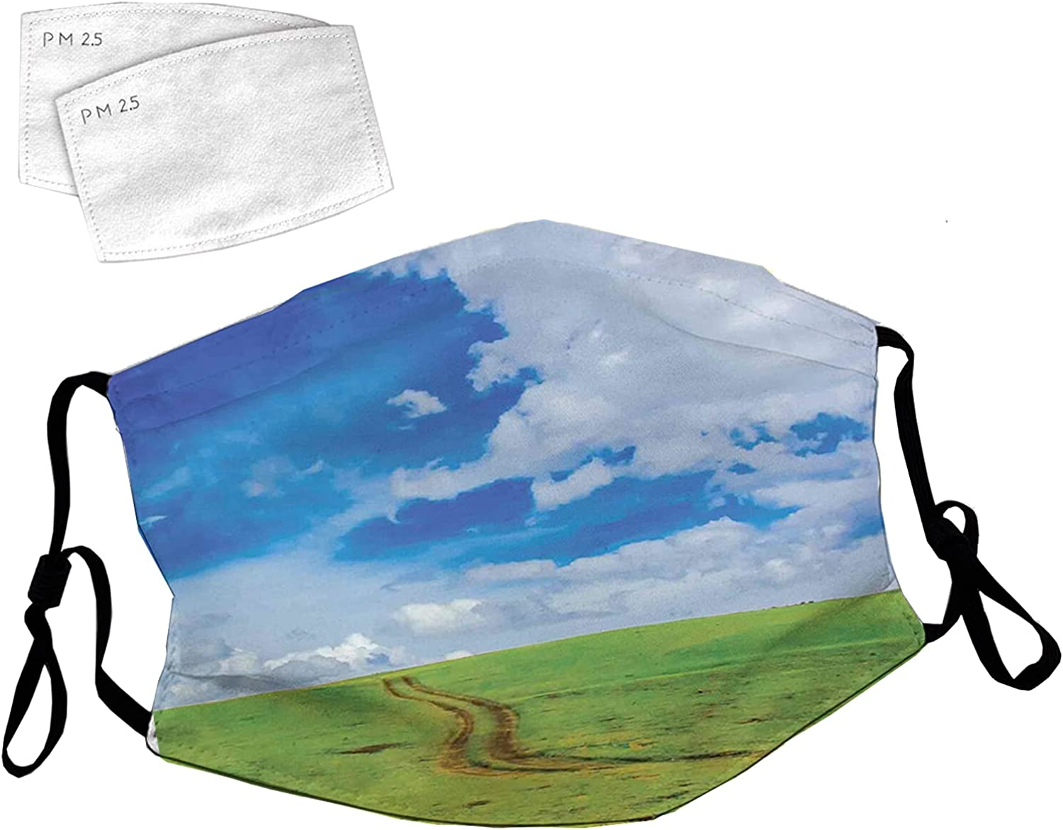 OFFer Reusable Face Mask Sale price with Adjustable Ear Road Path on Loops Earth