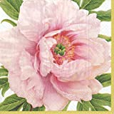 Entertaining with Caspari Blush Paper Cocktail Napkins (Box of 40), Pink