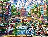 5D Diy diamante pintura dibujo Amsterdam amor bicicleta completo redondo diamante bordado decoración del hogar pintura Navidad Halloween regalo 50x70cm