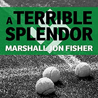 A Terrible Splendor audiobook cover art